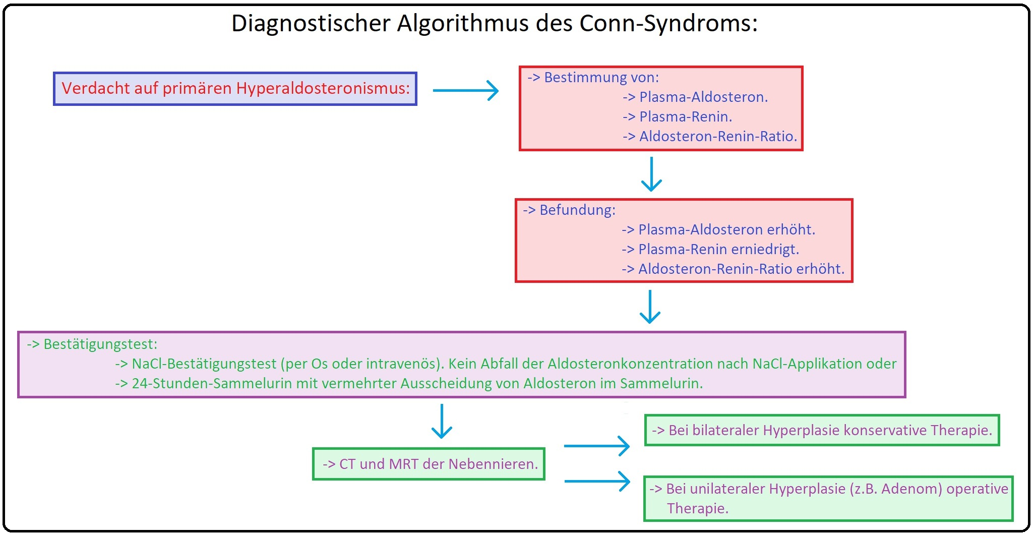 1077 Diagnostischer Algorithmus des Conn Syndroms