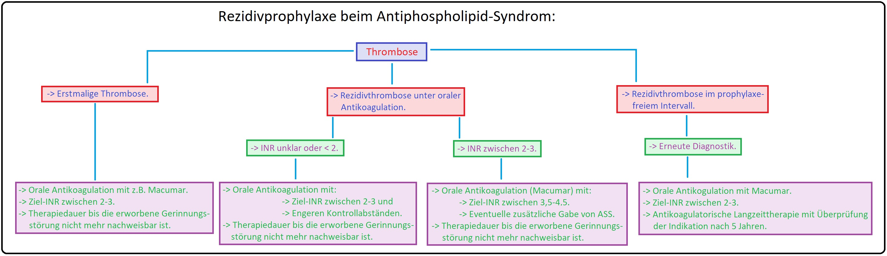 1109 Rezidivprophylaxe beim Antiphospholipid Syndrom