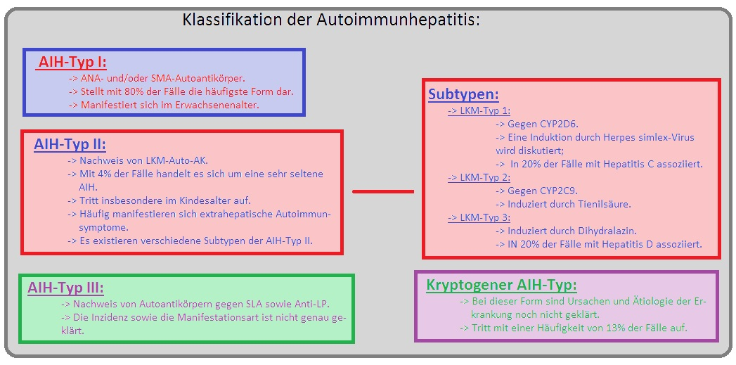305 Klassifikation der Autoimmunhepatitis